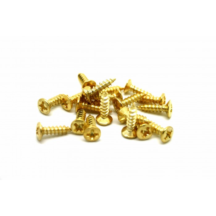 20x GOLD SCREWS FOR PICKGUARD JACK NECK PLATE - TORNILLOS PARA BAJO O GUITARRA