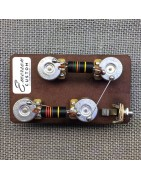 Pre-wired kit for bass and guitar